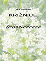 093_00_00a_kriznice_Brassicaceae.jpg
